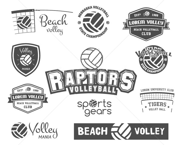 Volleyball labels, badges, logo and icons set. Sports insignias. Best for volley club, sport shops,  Stock photo © JeksonGraphics