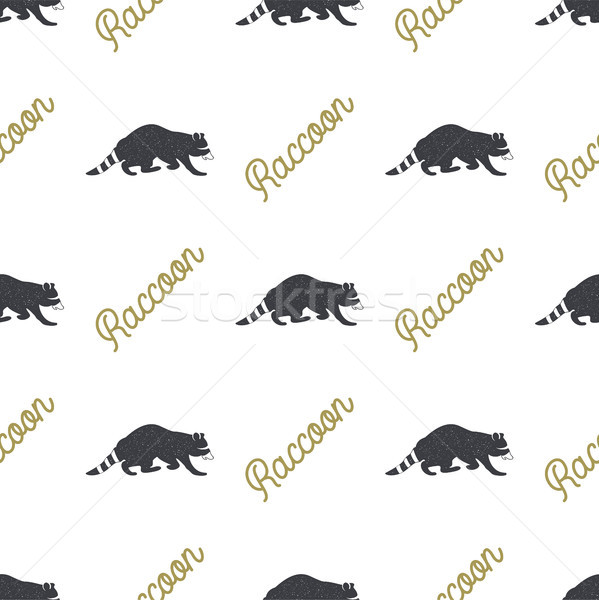 Raccoon seamless with typography sign. Wild animal wallpaper. Stock vector pattern isolated on white Stock photo © JeksonGraphics