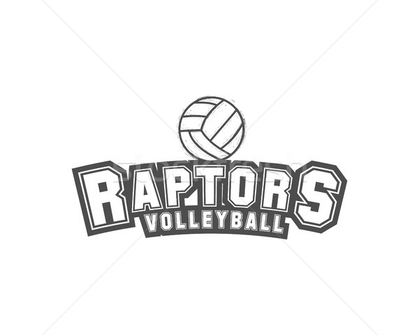 Volleyball label, badge, logo and icon. Sports insignia. Best for volley club, league competition, s Stock photo © JeksonGraphics