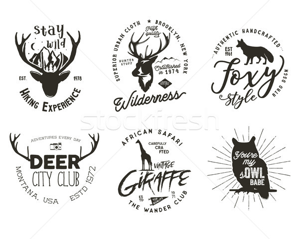 Wild animal badges set. Included giraffe, owl, fox and deer shapes. Stock vector isolated on white b Stock photo © JeksonGraphics