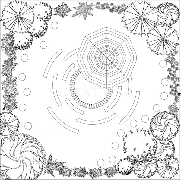 Plan of garden black and white Stock photo © jelen80