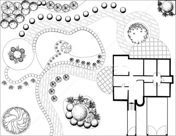 计划 花园 黑白 符号 树水 商业照片 jelen80