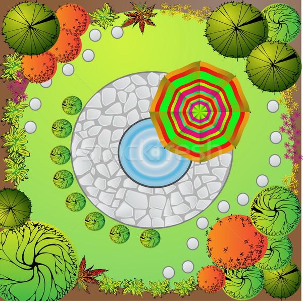 庭園 計画 装飾的な 植物 水 ストックフォト © jelen80