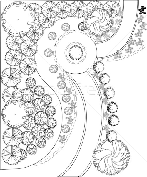 Plan of garden with plant symbols Stock photo © jelen80