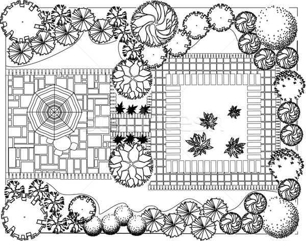 計画 庭園 装飾的な 植物 黒白 水 ストックフォト © jelen80