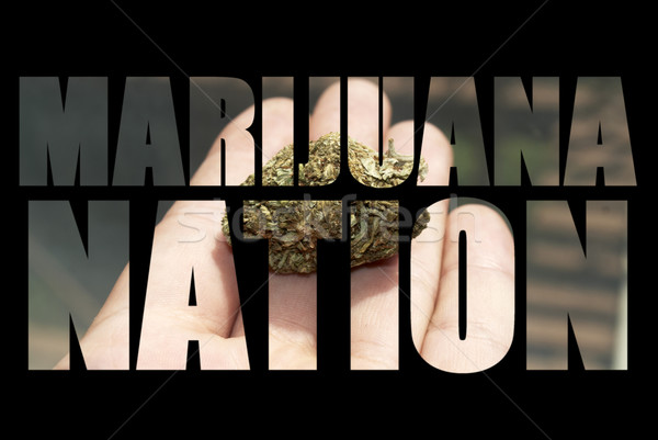 Medical Marijuana  Stock photo © jeremynathan