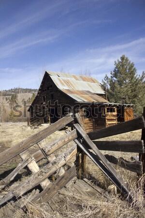 Velho vintage cabine mata floresta abandonado Foto stock © jeremywhat