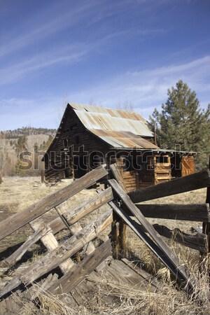 Vieux vintage cabine bois forêt abandonné Photo stock © jeremywhat