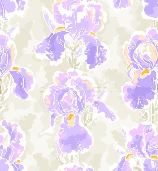 Seamless pattern with iris Stock photo © jet