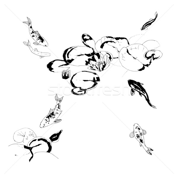 Koi vis lotus bloemen zwart wit kleur Stockfoto © jet