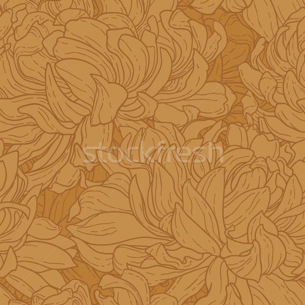 Krizantem model çiçek Stok fotoğraf © jet