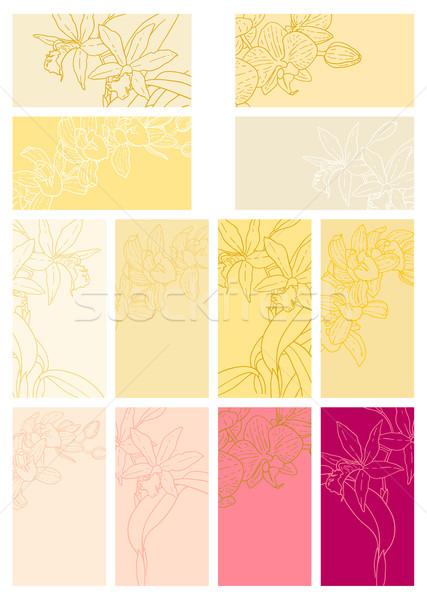 Gyűjtemény virágmintás hátterek orchideák egy színes Stock fotó © jet