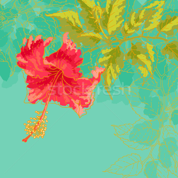 Hibiscus flower on toned background Stock photo © jet