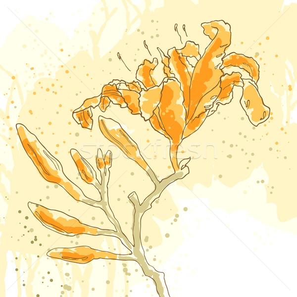 Vektor mintázott liliom három citromsárga papír Stock fotó © jet