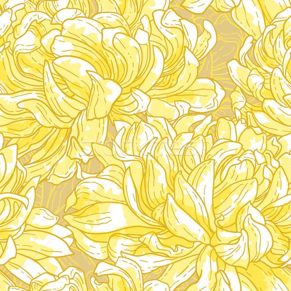 Seamless pattern with chrysanthemum Stock photo © jet