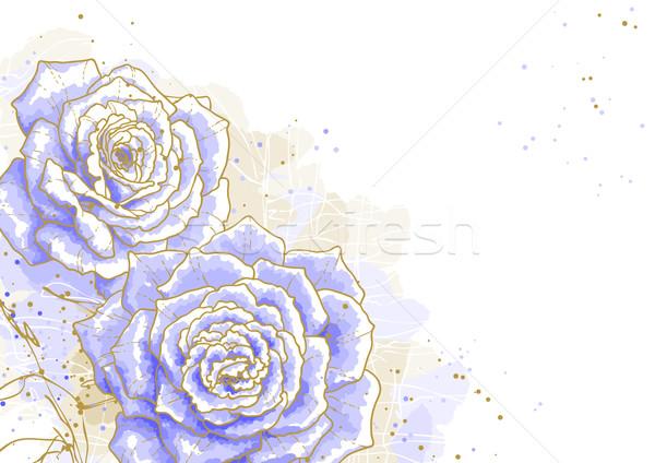 Kék rózsák fehér körvonal rajz levelek Stock fotó © jet