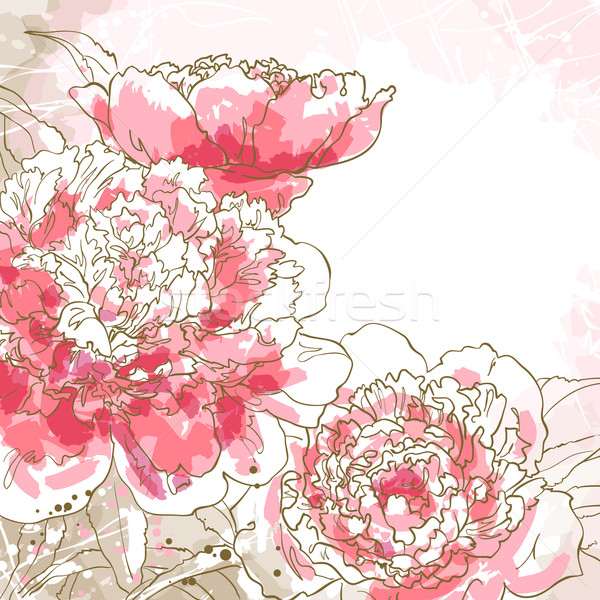 Romantic vector background with peony  Stock photo © jet