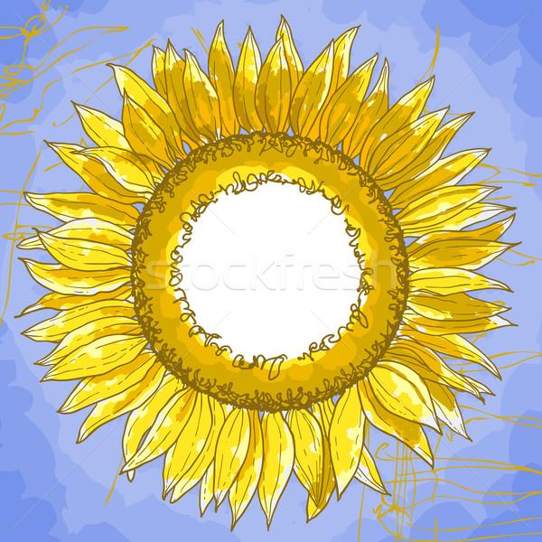 Tér keret napraforgók körvonal rajz virág Stock fotó © jet