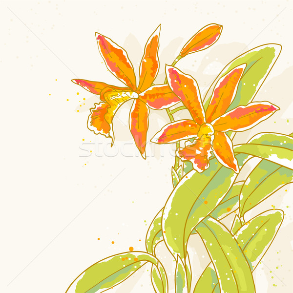 Branch of orange orchids on toned background Stock photo © jet
