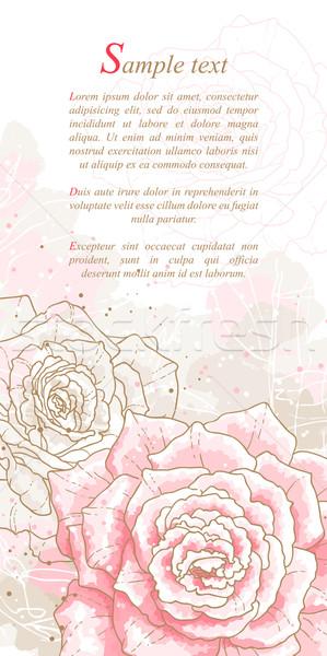 Romantikus rózsaszín rózsák vízfesték stílus konzerv Stock fotó © jet
