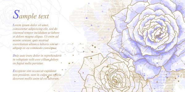 Romantikus kék rózsák vízfesték stílus konzerv Stock fotó © jet