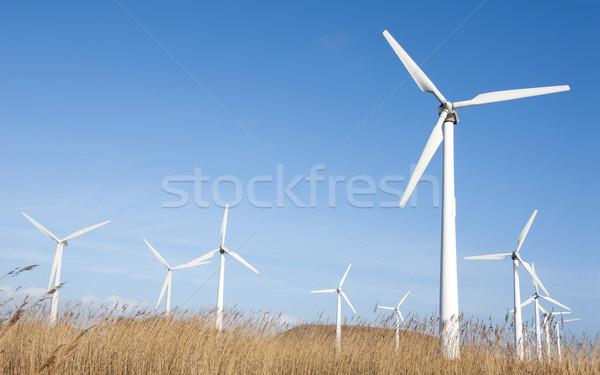 Szélturbinák szélturbina farm kék ég természet technológia Stock fotó © jezper