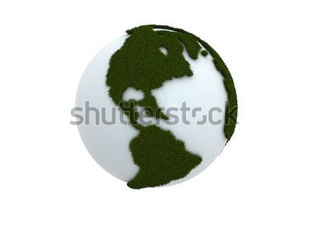 Bianco mondo erba verde mondo acqua erba Foto d'archivio © jezper
