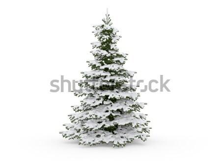 Karácsonyfa fehér fa boldog háttér karácsony Stock fotó © jezper
