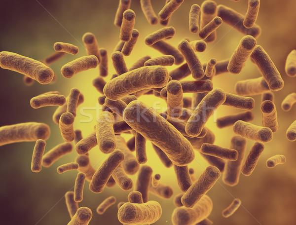 Bacteria cells  Stock photo © jezper