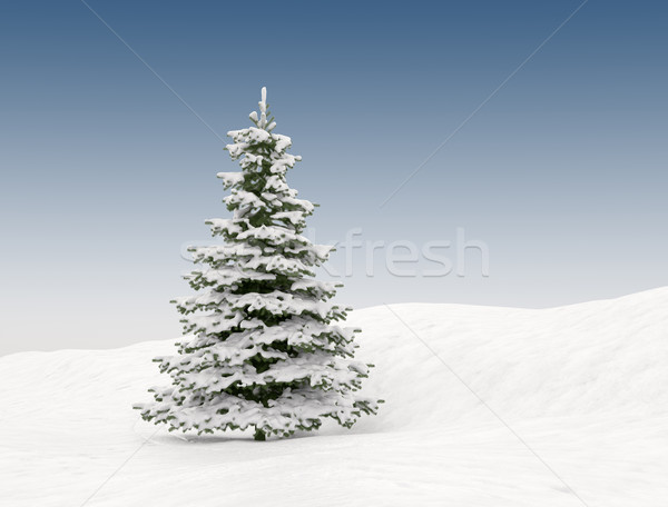 Christmas tree  Stock photo © jezper