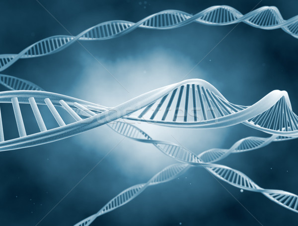 ДНК науки иллюстрация технологий здоровья фон Сток-фото © jezper