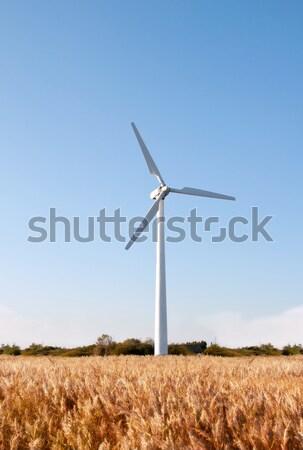 éolienne ciel bleu ciel paysage technologie domaine Photo stock © jezper