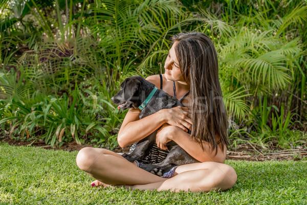 Cachorro sesión fuera césped jugando Foto stock © JFJacobsz