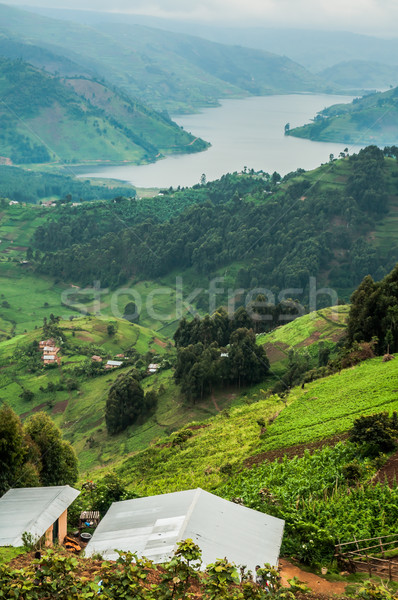 Lake Bunyonyi Viewed from Up High. Stock photo © JFJacobsz