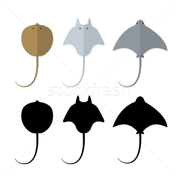 Top view, Stingray in flat and silhouette style Stock photo © jiaking1
