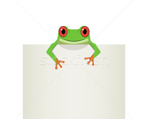 Red eye frog on top white paper, vector Stock photo © jiaking1