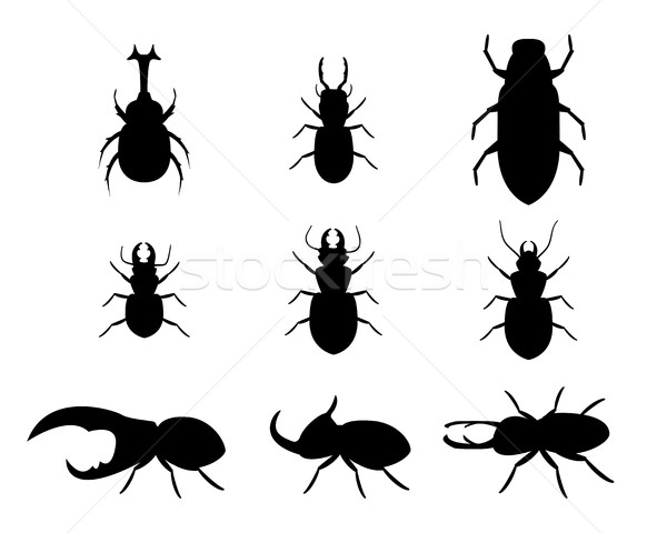 Set of stag beetle in silhouette style, vector Stock photo © jiaking1