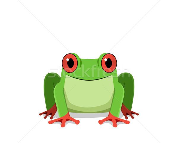 Kırmızı göz kurbağa görmek vektör Stok fotoğraf © jiaking1