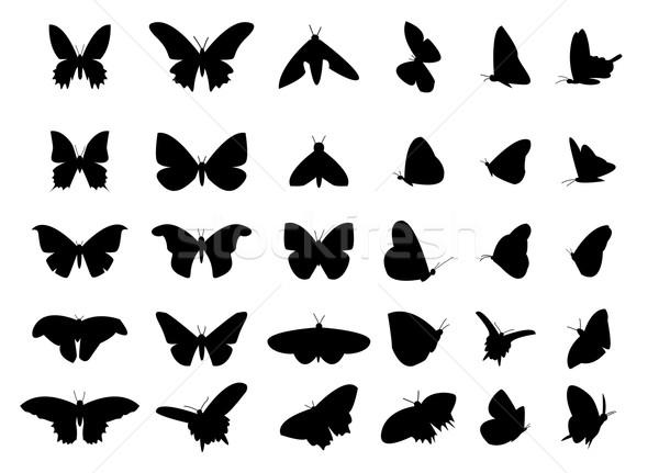 ストックフォト: セット · 飛行 · 蝶 · シルエット · 孤立した · ベクトル