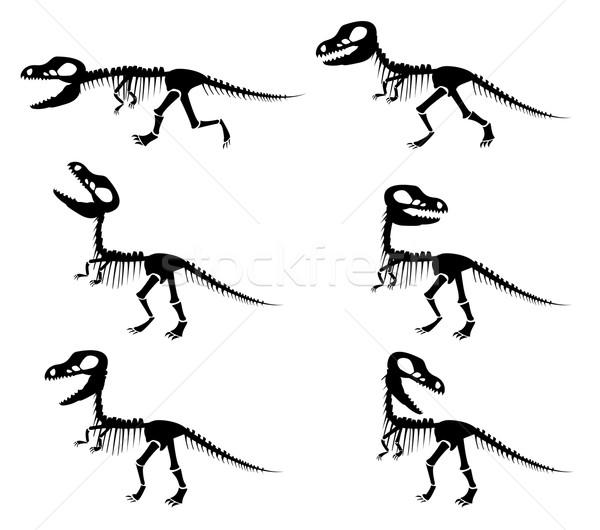 silhouettes of the skeleton of a Tyrannosaurus rex  Stock photo © jiaking1