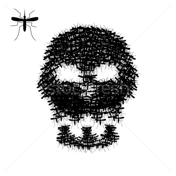 Skull of mosquito isolated on white, vector Stock photo © jiaking1