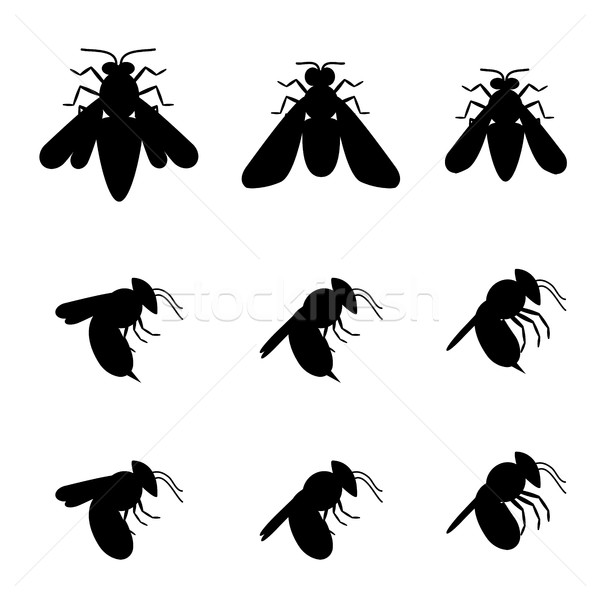 Bee iconen silhouet top zijaanzicht vector Stockfoto © jiaking1