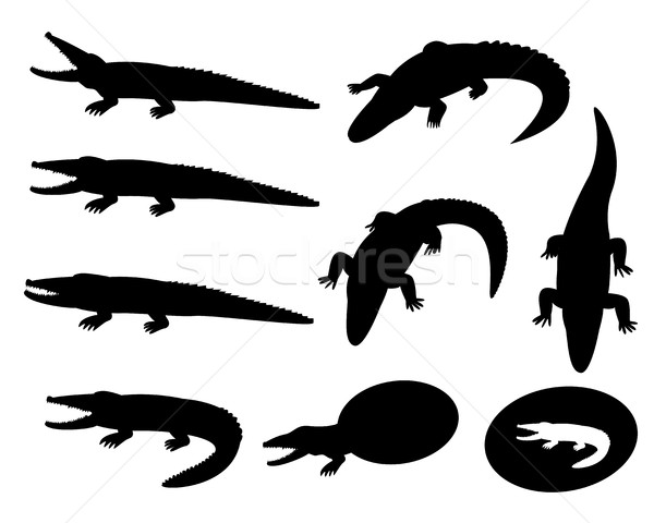 Set of crocodile silhouettes on white, vector Stock photo © jiaking1