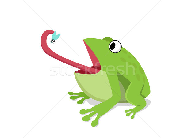 Green frog eat insect on white, cartoon vector Stock photo © jiaking1