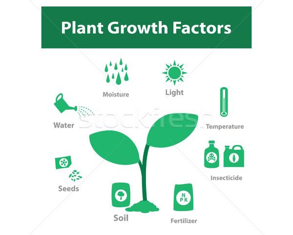 Bitki büyüme faktör tek renkli vektör Stok fotoğraf © jiaking1