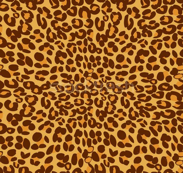 Leopárd nyomtatott bőr vektor textúra háttér Stock fotó © jiaking1