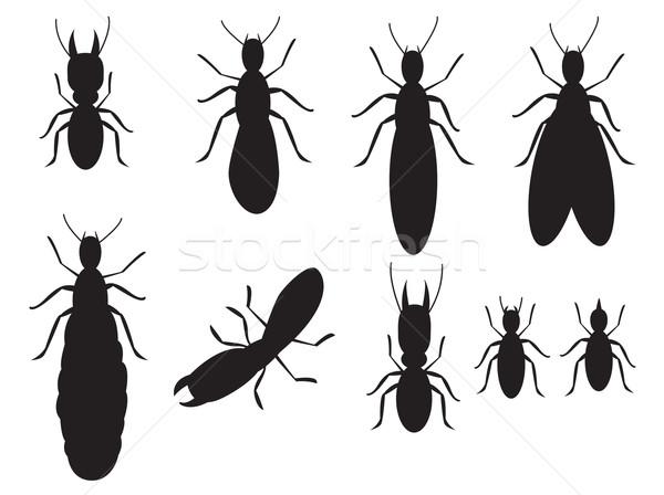 Szett fekete sziluettek fehér család terv Stock fotó © jiaking1
