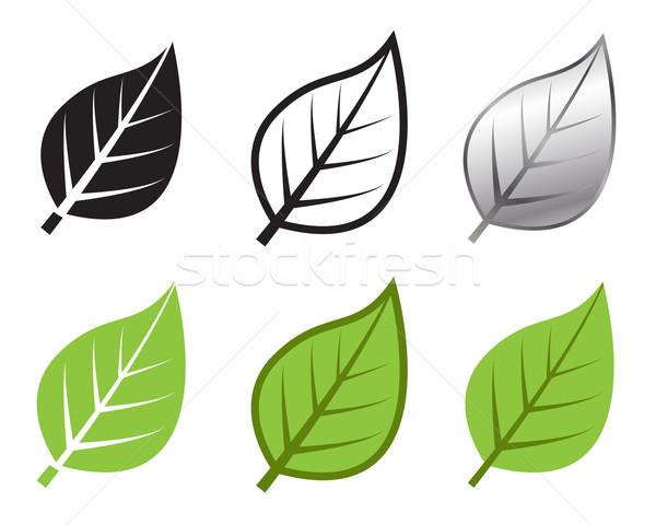 Hierba hoja icono muchos estilo vector Foto stock © jiaking1