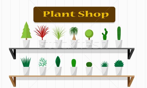 Bitki alışveriş yeşil raf vektör Stok fotoğraf © jiaking1