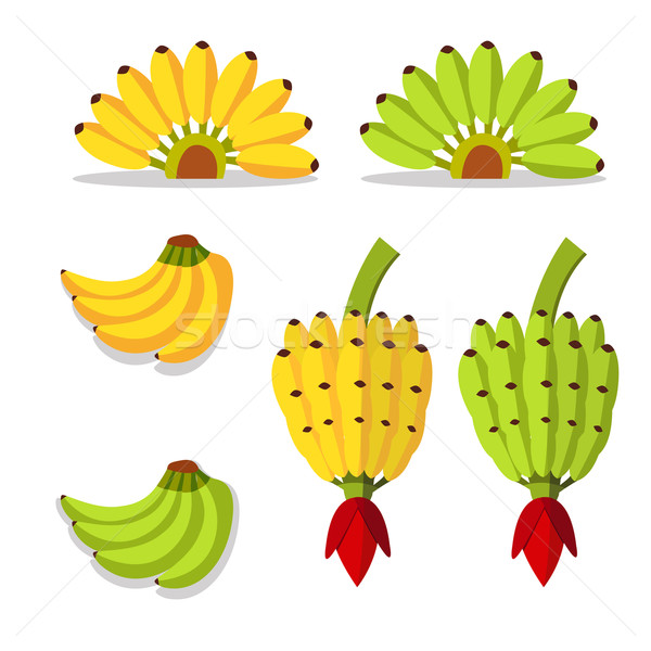 bunch of bananas with yellow and green Stock photo © jiaking1